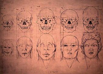 eugenics chart